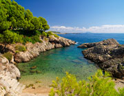 Business Travel Mallorca Informationen