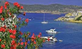 Mallorca Urlaub geniessen Genussreisen & Weinreisen